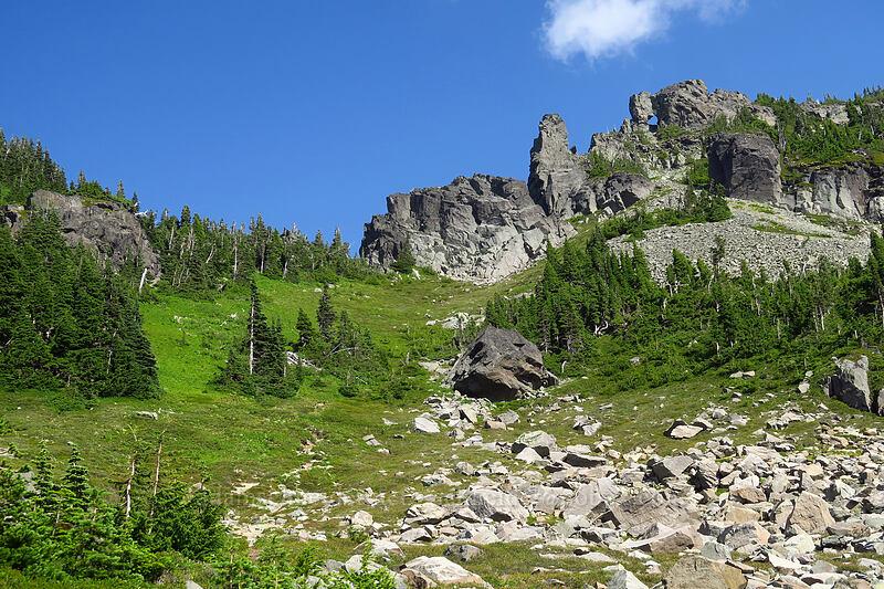 west side of Knapsack Pass [Knapsack Pass Trail, Mount Rainier National Park, Washington]