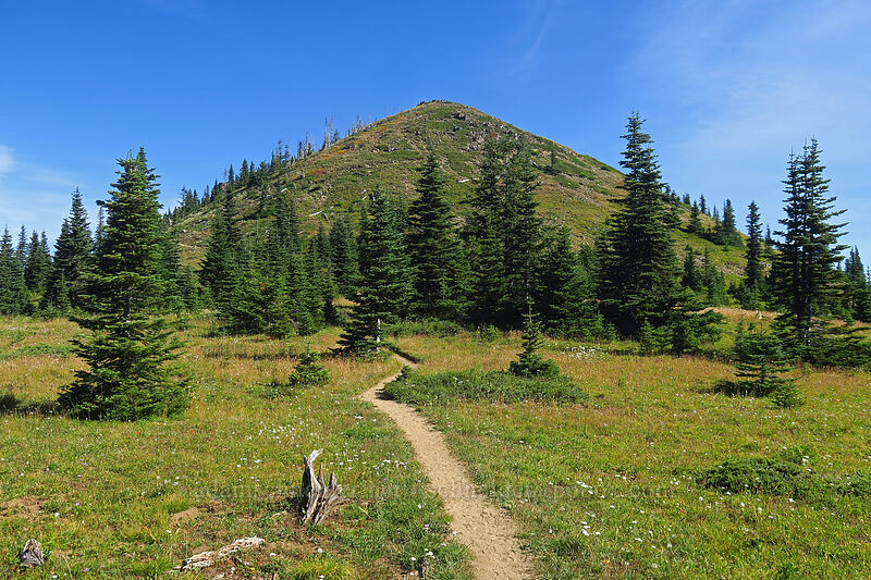 Noble Knob [Noble Knob Trail, Mt. Baker-Snoqualmie National Forest, Washington]