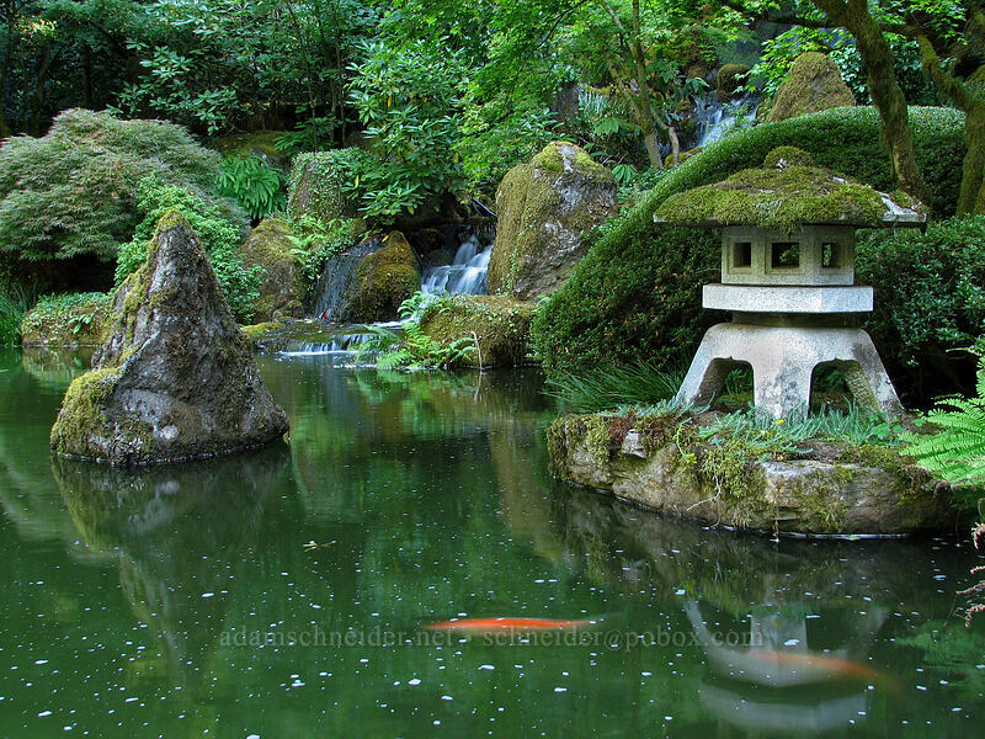 pond [Portland Japanese Garden, Portland, Oregon]