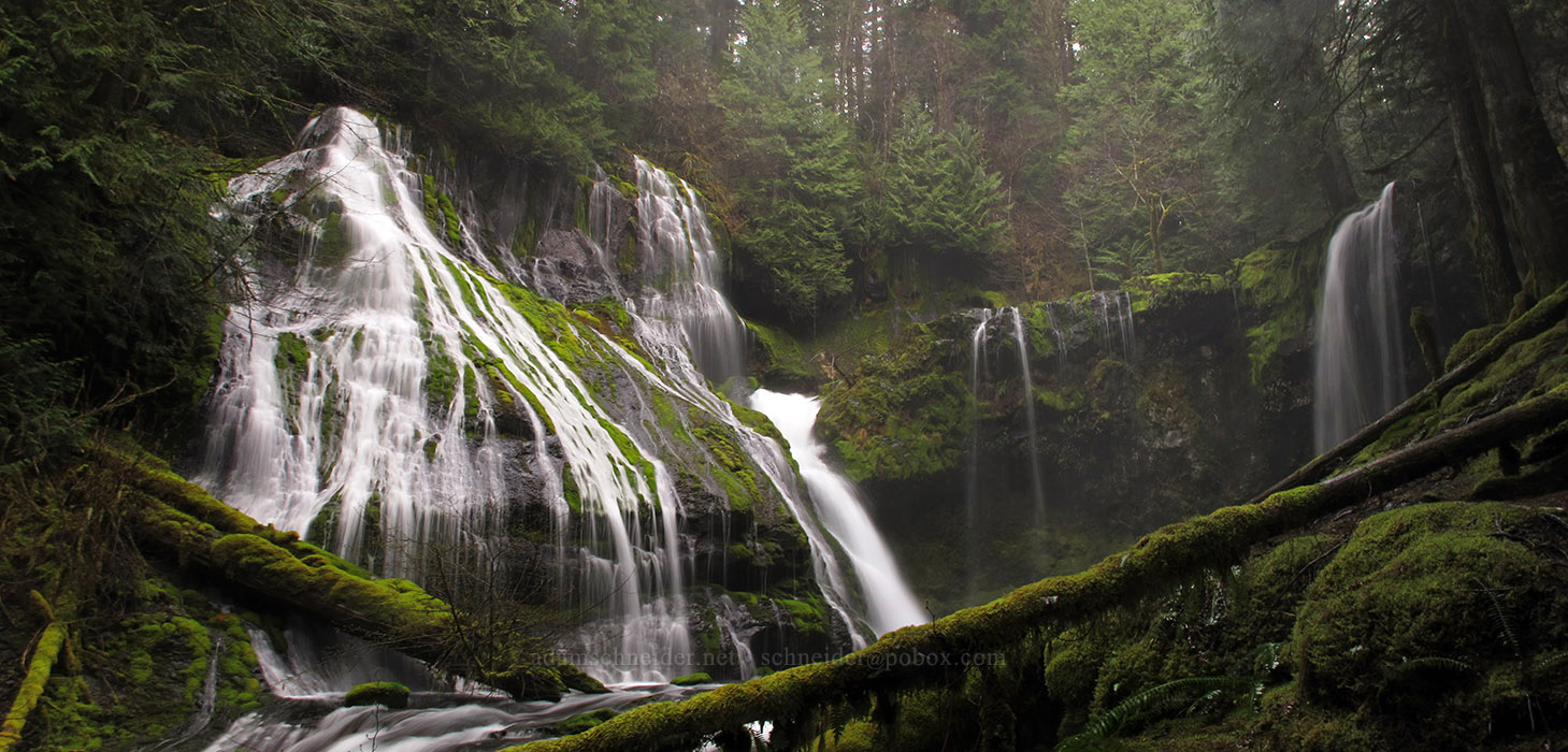 Panther Creek Falls panorama [Forest Road 65, Gifford Pinchot National Forest, Washington]