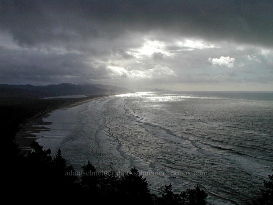 winter storm [Highway 101, Oswald West State Park, Oregon]