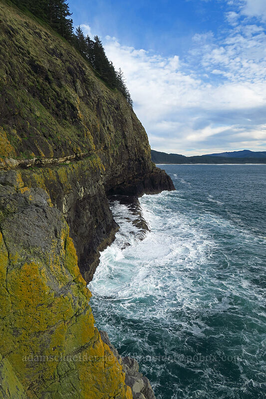 south side of Cape Lookout [Cape Lookout, Cape Lookout State Park, Oregon]