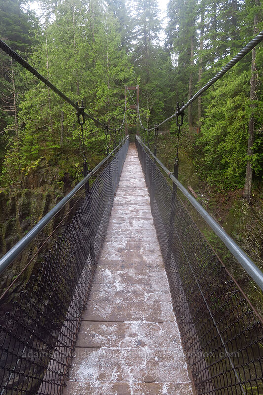 slushy suspension bridge [Drift Creek Falls Trail, Siuslaw National Forest, Oregon]