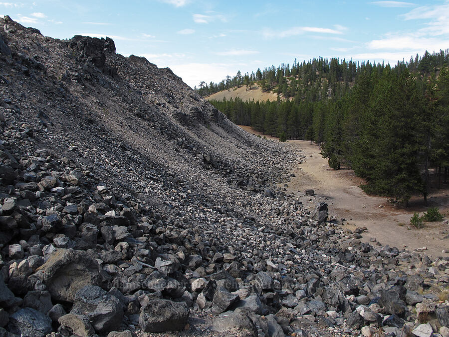 edge of the obsidian flow [Big Obsidian Flow, Newberry National Volcanic Monument, Oregon]