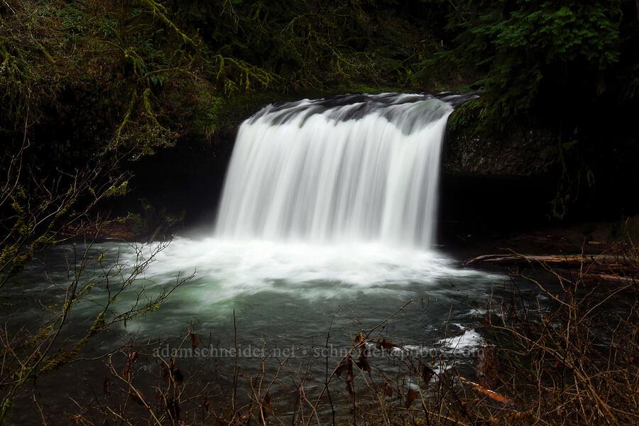 Upper Butte Creek Falls [Butte Creek Falls Trail, Santiam State Forest, Oregon]